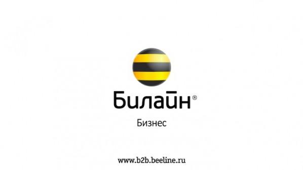 Ролик для Beeline бизнес – stop-motion инфографика